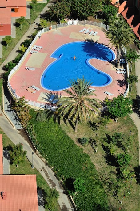 swimming pool in front of my home