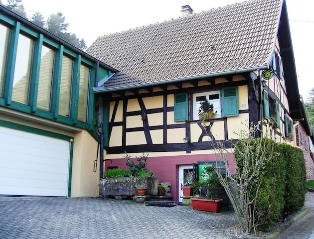 Maison alsacienne 4* avec jardin - Windstein - House