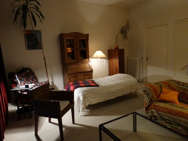 bedroom,tv,cv,wifi,bathroom 33 euro excl - The Hague - Bed & Breakfast