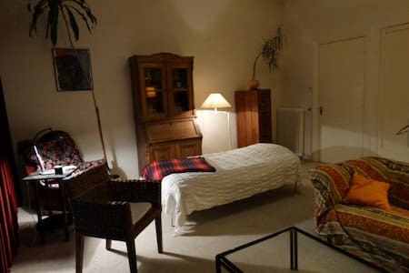 bedroom,tv,cv,wifi,bathroom 33 euro excl - Haag - Bed & Breakfast