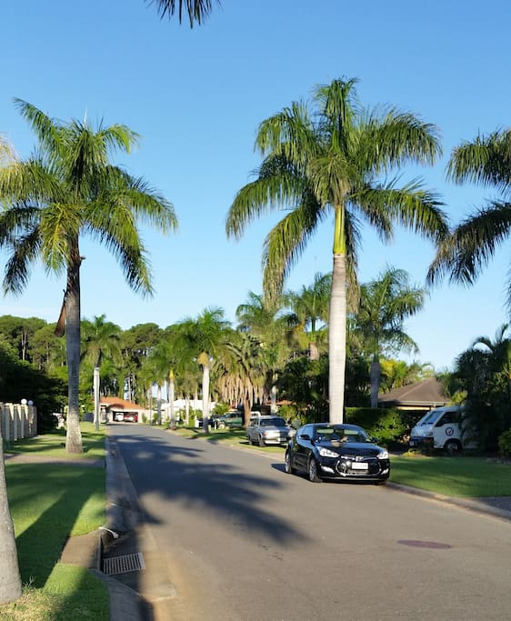 Beautiful quiet street in Hope Island