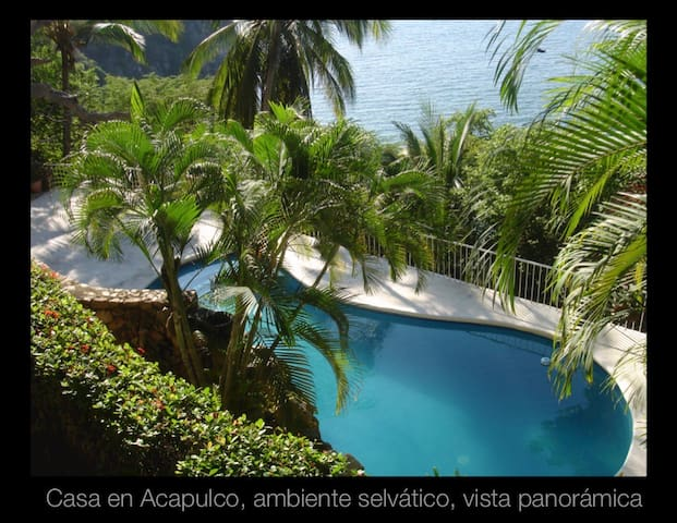 Villa Elsa Acapulco, breathtaking views, privacy