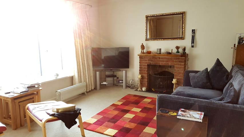Flat centrally located Chertsey