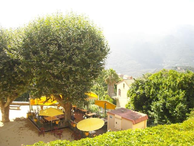 """Meublé 1 - """"Chez Dume"""" - Corse du Sud - Sainte-Lucie-de-Tallano - Departamento"""