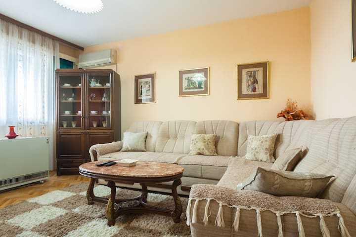 Cute and cozy 1BR, great location! - Podgorica - Apartamento