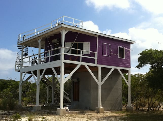 Purple House eco solar  w/ ocean & wildlife views