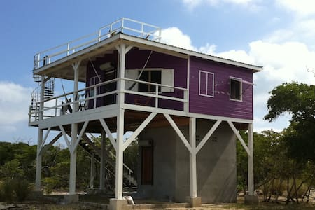 Purple House eco solar  w/ ocean & wildlife views