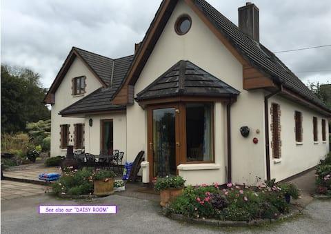 舒适的Cork City房源内的双人房(「郁金香房」)。