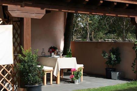 HOGAR DEL FRESNO (casa con encanto) - Cañicosa - Chalet