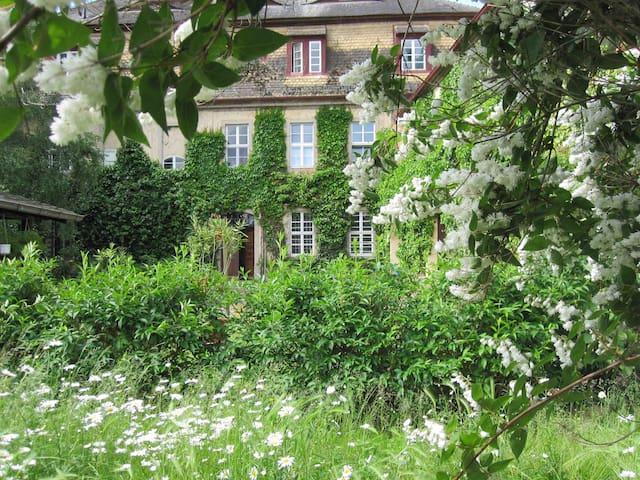 Ferienwohnung in Kulturdenkmal - Bad Schmiedeberg OT Pretzsch - Rumah