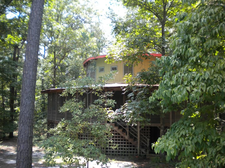 Treehouse in the Woods