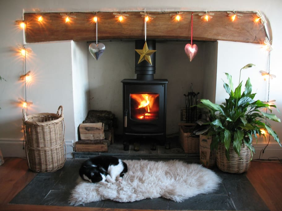 home sweet home - log burner warming us up, cat snoozing on the sheepie