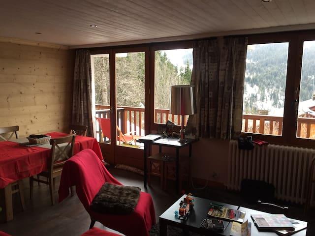 Appart 50 m2 balcon plein Sud