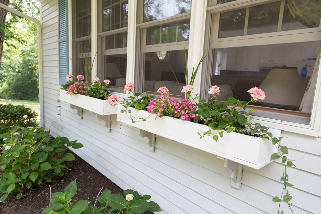 Pretty window boxes.