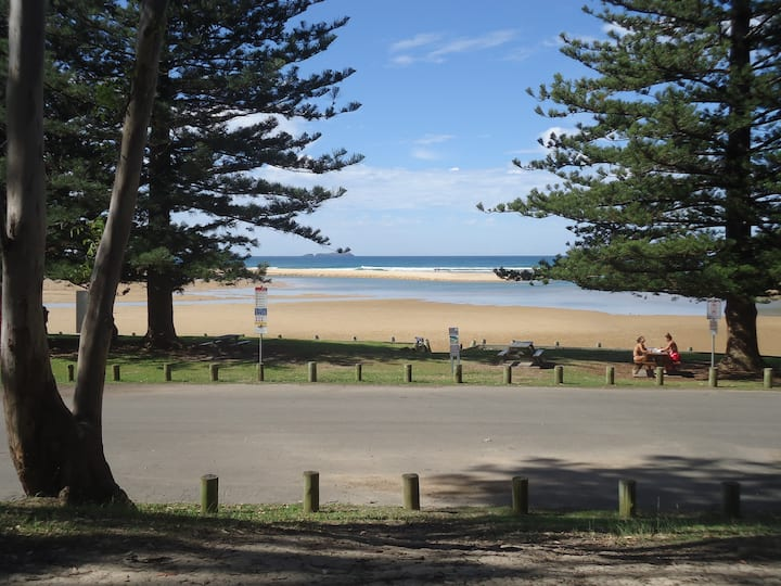 Tavs at Moonee Beach