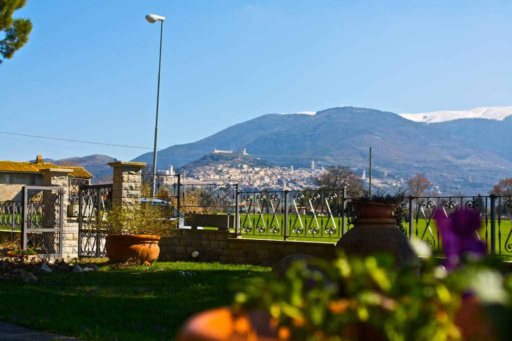 Panorama su Assisi dal nostro giardino