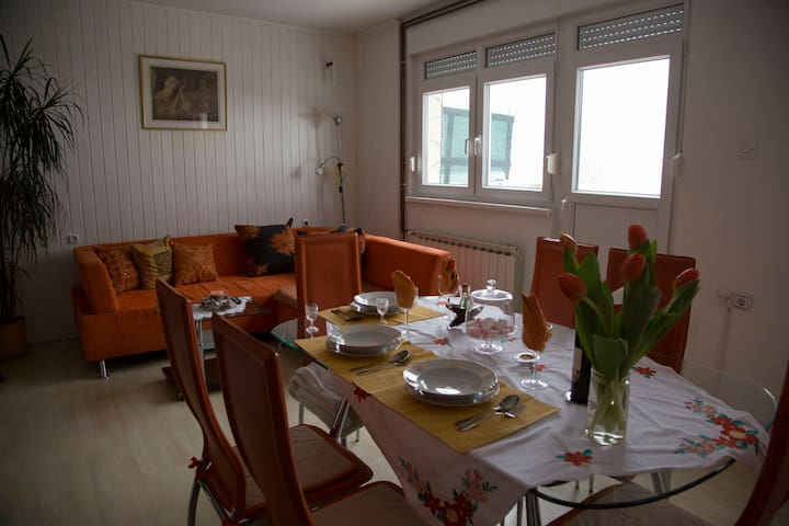 House next forest easy to center - Zagreb - Talo