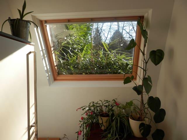 Room Palio - Woluwe-Saint-Pierre - Apartmen
