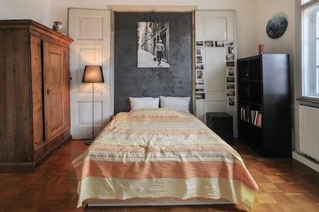 Großes sonniges Zimmer inStadtvilla - Tübingen