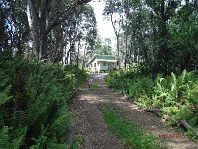 Peaceful Private Rainforest Getaway - Naalehu - Cabana