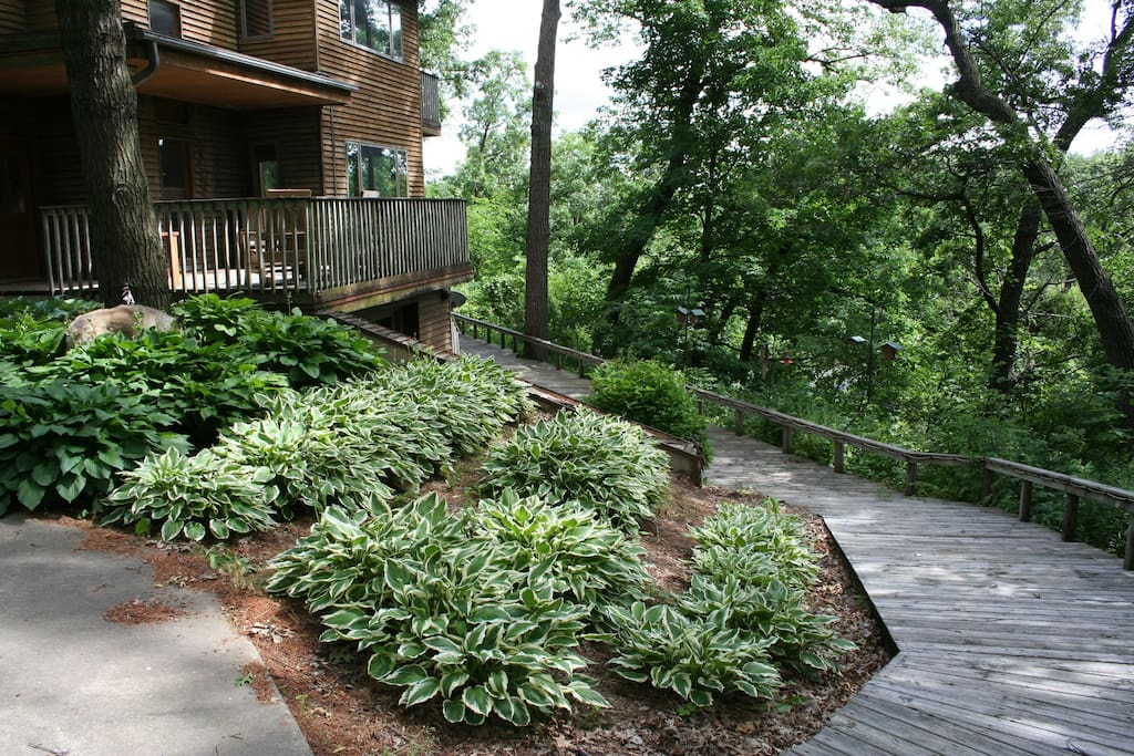 Front door deck is on the left and the wooden path to the river bottom is on the right.