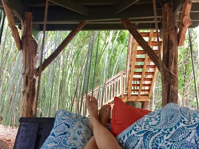 View from the swinging rope Bali bed. You'll feel like you're someplace remote but you'll still have loads of great entertainment and restaurants right here in Atlanta.