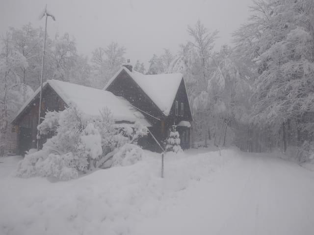 Villa Rustica- Farmhouse by X country Ski Trails