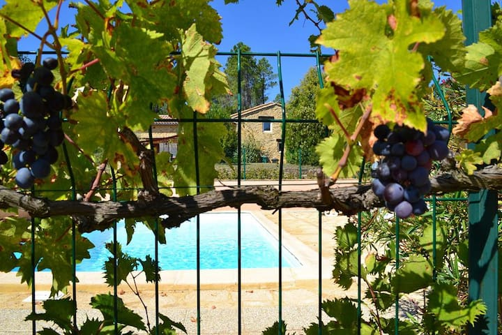 Mas au coeur de la Provence rien que pour vous ... - Saint-Julien-de-Peyrolas - House