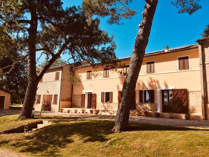 Villa Giorgio-Brettino: sea, meeting and family