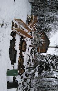 chalet de montagne  en plein forét  pour le ski - Saint-Adolphe-d'Howard