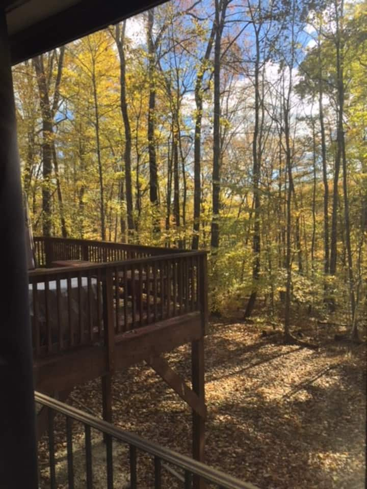 Beautiful Large Contemporary in Wooded Privacy