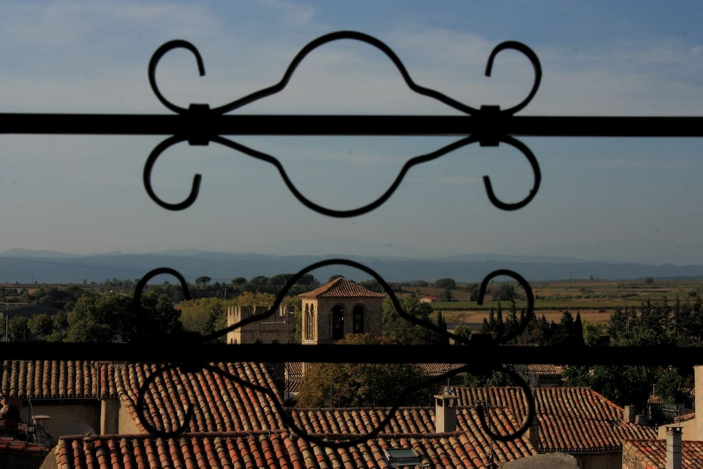 View over the vineyards to the Pyrenees