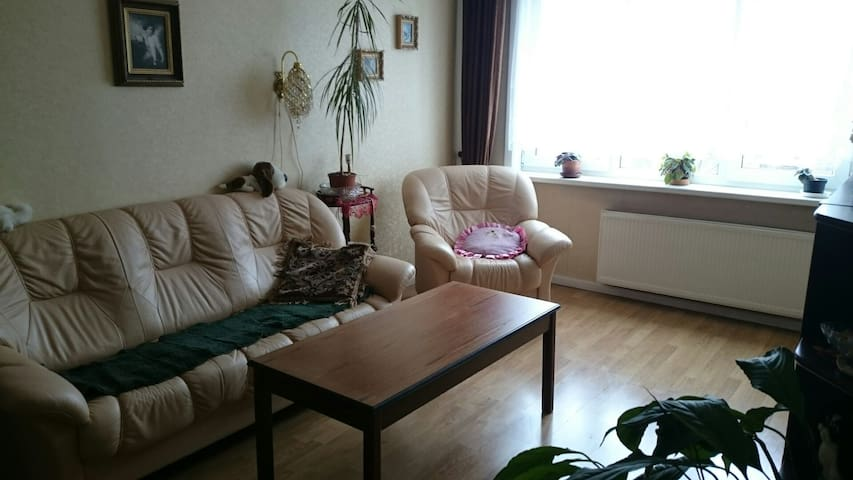Cosy eco appartament in Riga - Rīga - Apartment