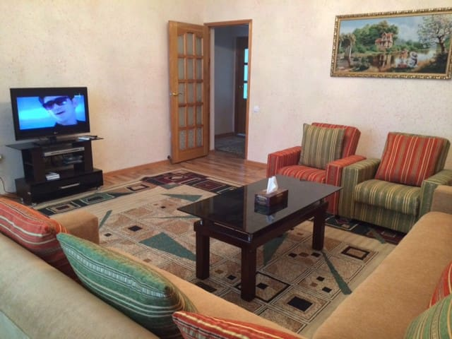 Nice and fully furnished apartment - Tashkent - Apartment