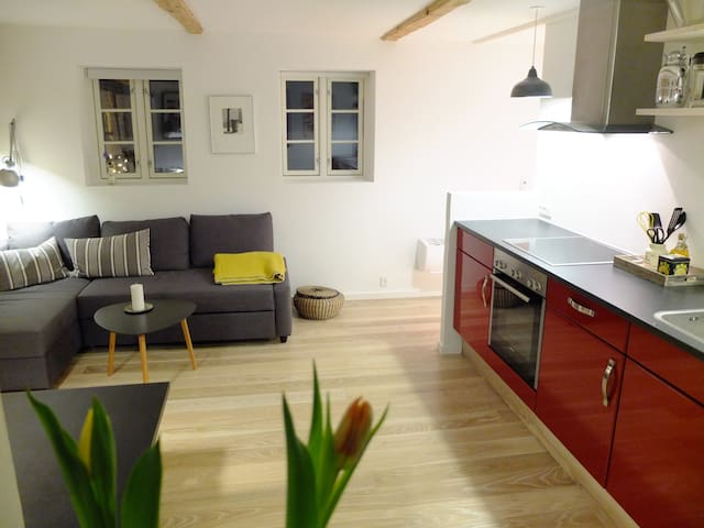 Modern apartment with lovely garden - Hillerød - Daire