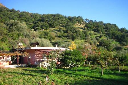Nature's  paradise for two - Motta Camastra - Cabaña
