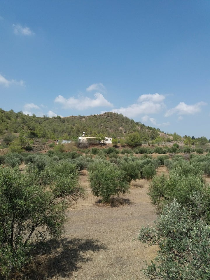 House in Sia Wooded  Area 30km from Larnaca Beach