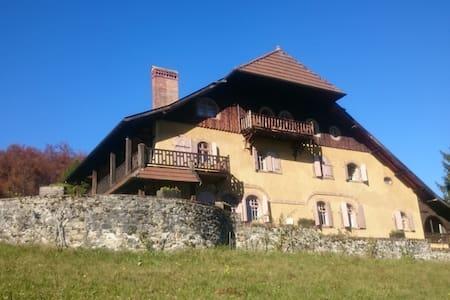 4 pièces dans demeure historique, vue sur le lac - Les Grangettes