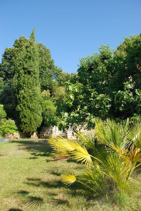 Jardin du bas où est implantée la piscine