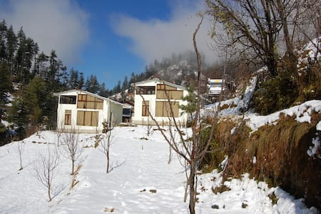 Jibhi House - Cafe and Cottages