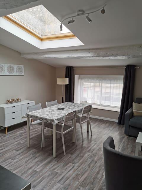 Grand studio meublé et équipé de 35 m2 neuf