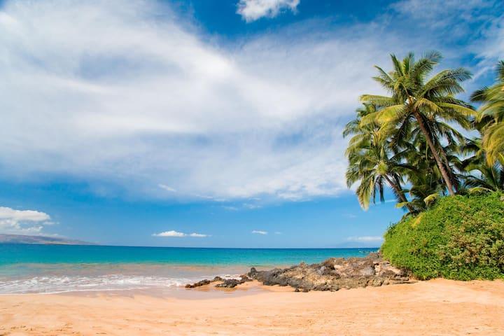 OCEANFRONT*DELUXE Ocean Vw*MODERN*by best Beaches