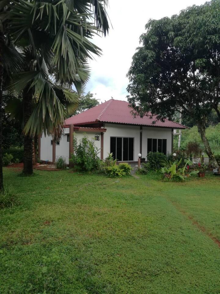 Noi's Homestay in beautiful Khao Yai nature