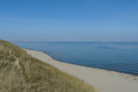 Skagen, Hulsig .....Back to Nature