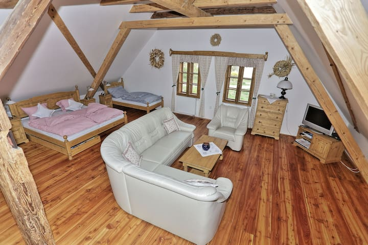 Exclusive Water Mill Near Prague - Mnichovice - Podkroví