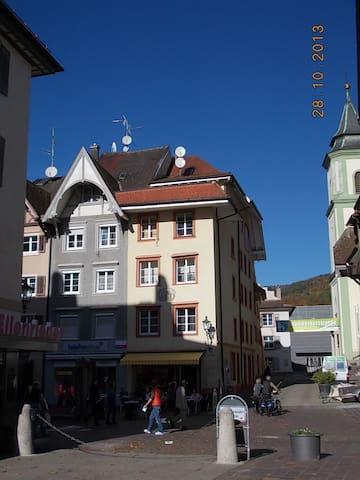 1 Zi. Whg. in Waldshut Altstadt 2OG - Waldshut-Tiengen - Appartement
