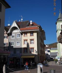1 Zi. Whg. in Waldshut Altstadt 2OG - Waldshut-Tiengen - Leilighet