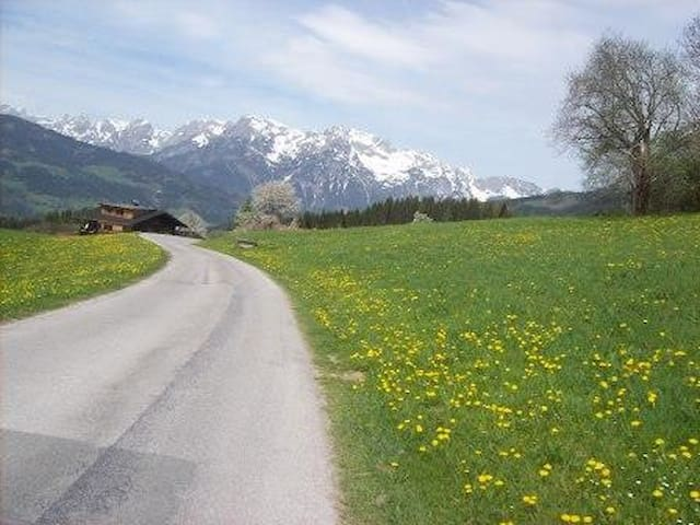 Salzburg region: Alps, nature and sport - Weng - Lägenhet