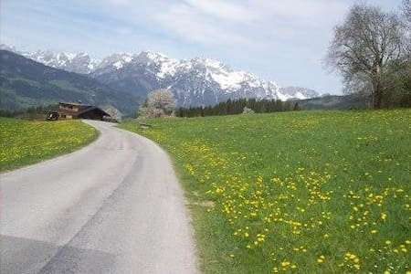 Salzburg region: Alps, nature and sport - Flat