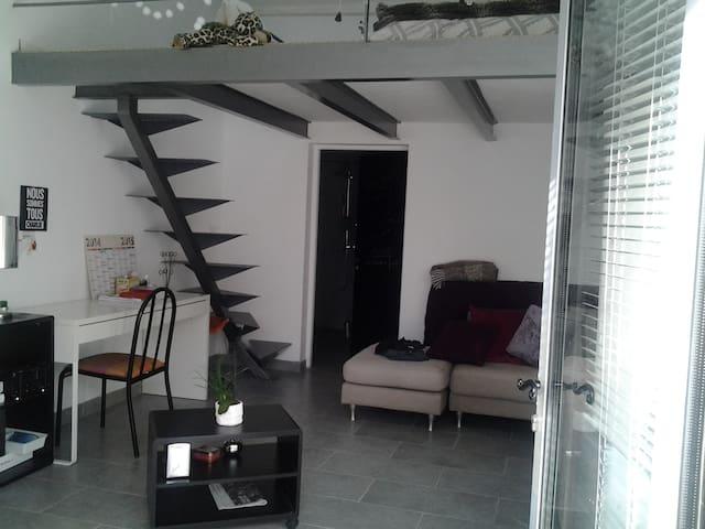 studio 35 m2 - couchage mezzanine - Prades-le-Lez - Jiné